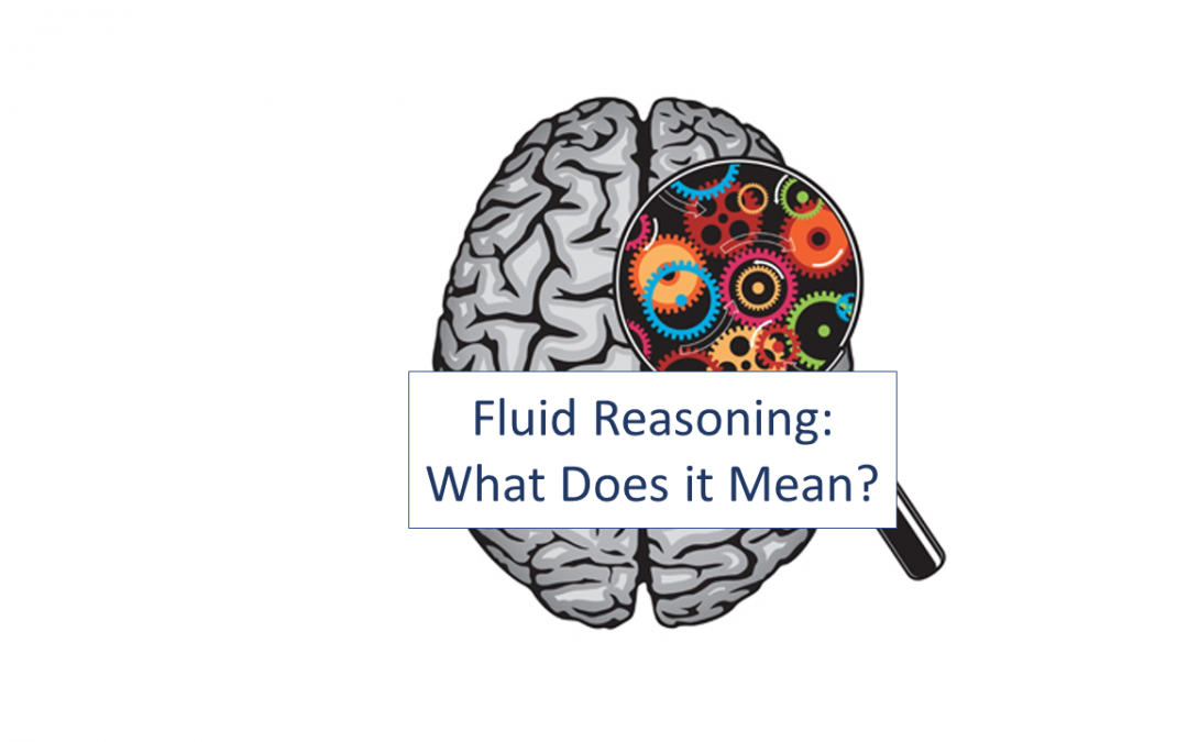 Fluid Reasoning: What Does it Mean?