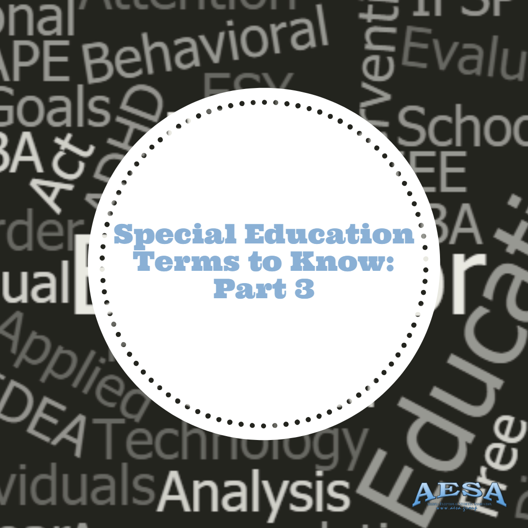 Special Education Terms To Know: Part 3
