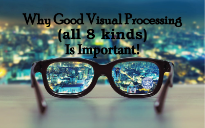 Why Good Visual Processing (all 8 kinds) Is Important!